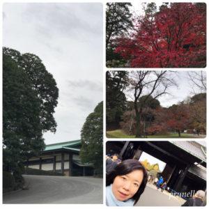 プリュネル東京観光皇居編